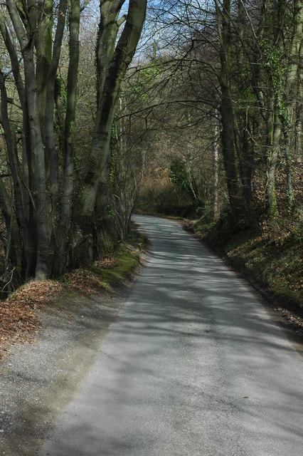 Country road at Great Doward