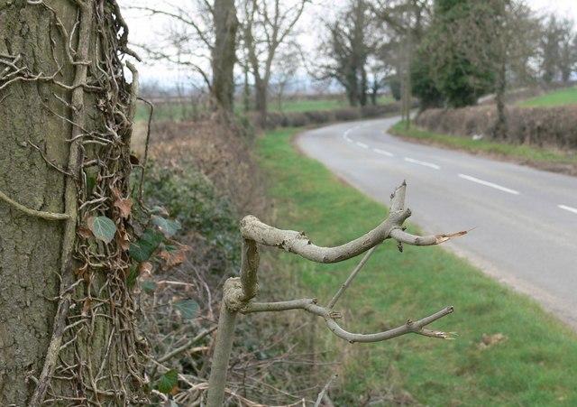 West along Rearsby Lane