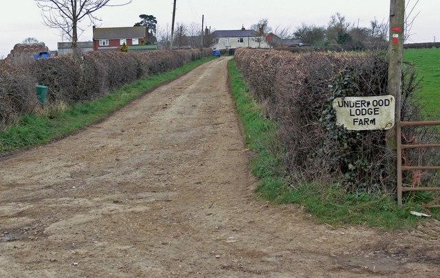 Driveway to Underwood Lodge Farm