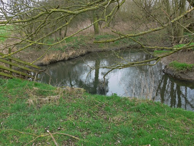 A meander of Gaddesby Brook