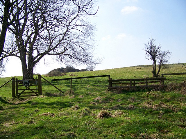 Horse jump, Pentridge Down