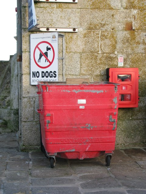No dogs in this rubbish bin (on St Ives pier)