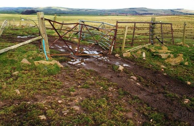 Three farm gates of different construction
