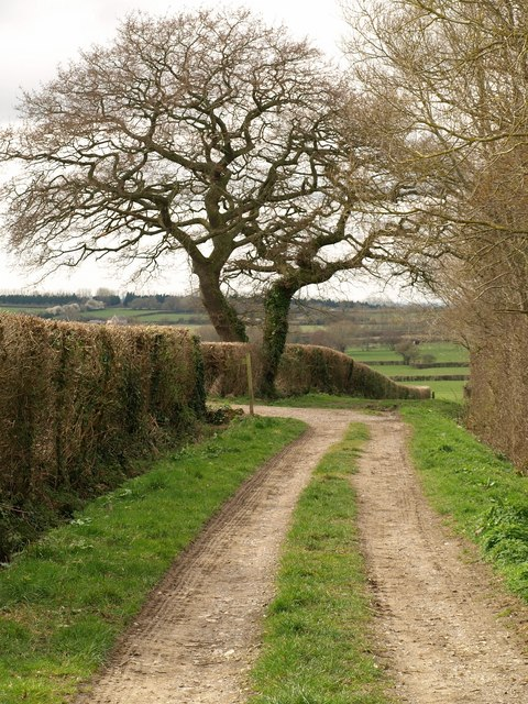 Gaston's Lane