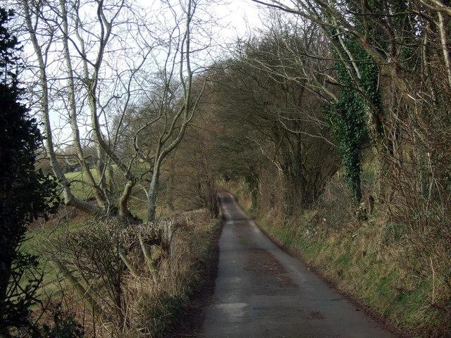 Lane leading to Cwm Milaid