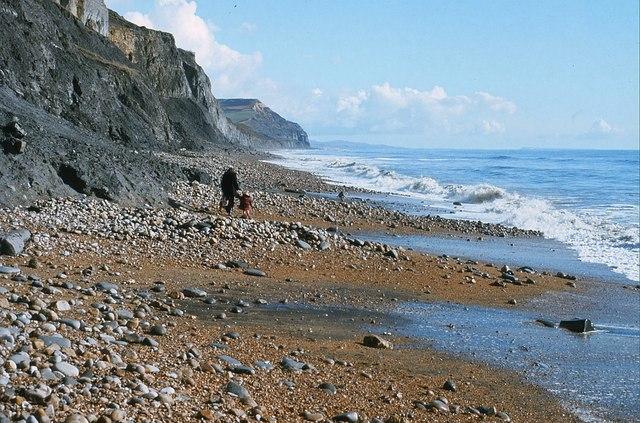 Beach at Charmouth