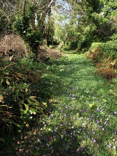 Flowery path, Parke