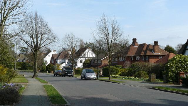 Street Scene, Peaks Hill, Woodcote