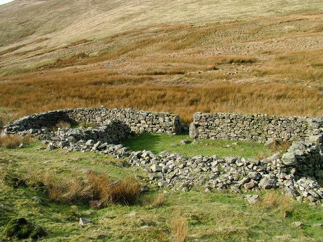 Sheepfold near Gill Beck
