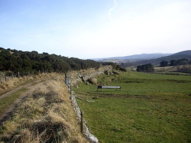 Track to Balnacraig