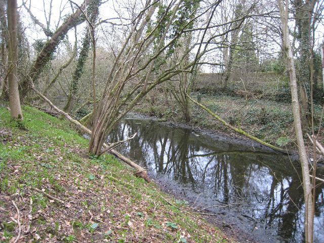 Thames & Severn Canal near Ewen