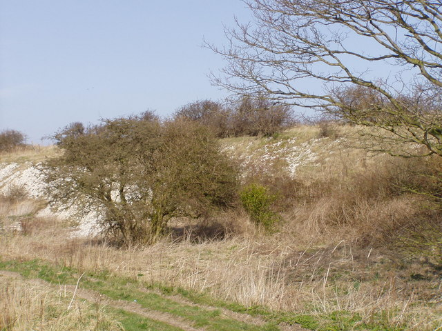 Railway Embankment near Grindale Road