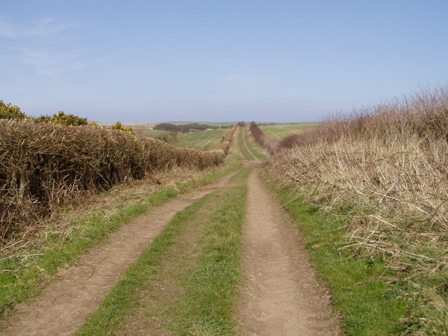 End of Hoddy Cows Lane