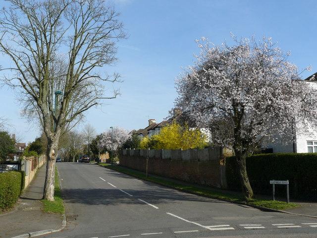 Street Scene, Heathdene Road, Carshalton