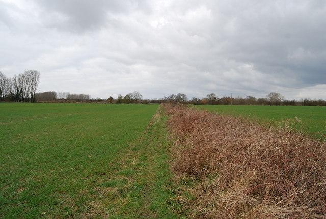 Bridleway along a ditch & field edge