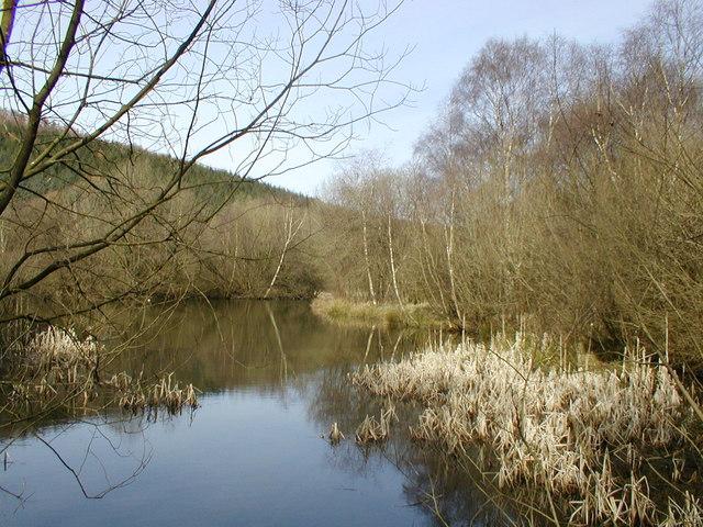 Pexton Pond