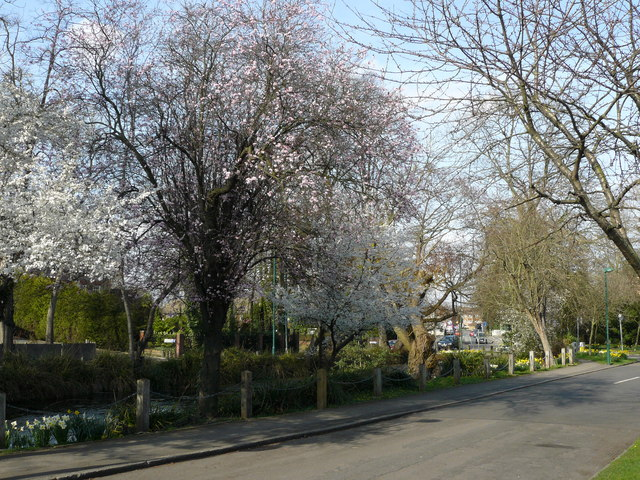 Street Scene, Wallington