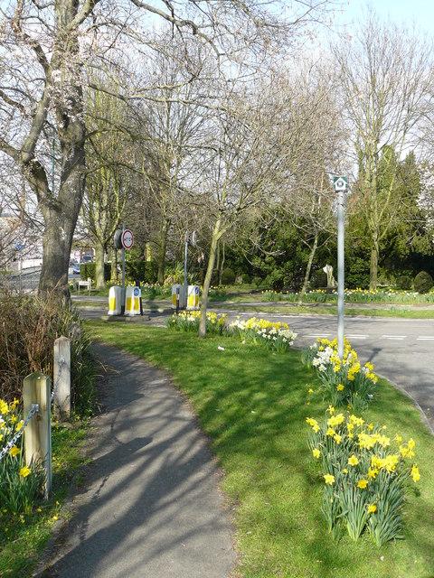 Path Near Beddington Park
