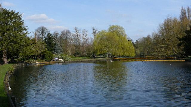 Lake in Beddington Park