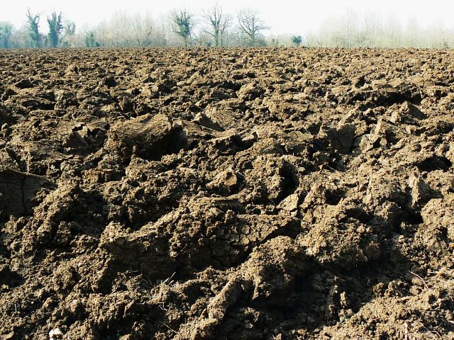 Ploughed field, Trow Lane, Tockenham