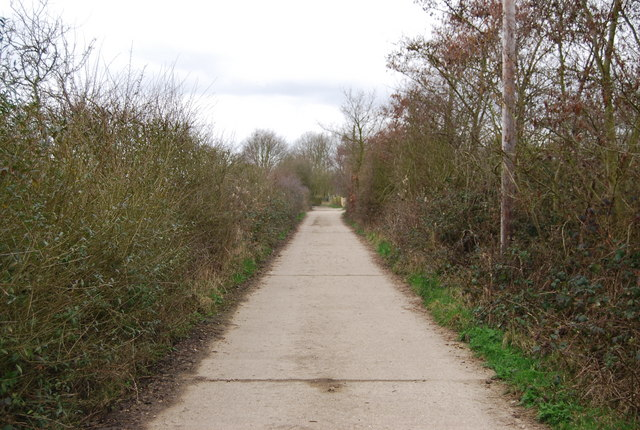 Track heading towards Blean Woods
