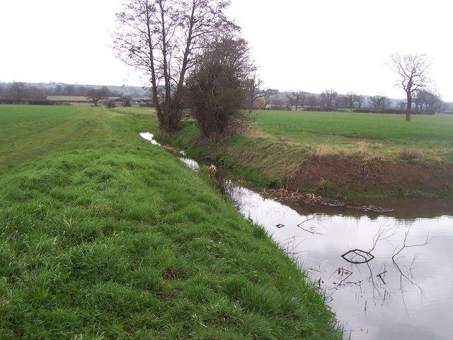 Footpath beside stream