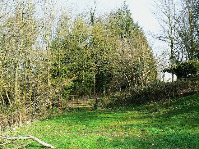 Footpath to West Close Copse, Tockenham Wick