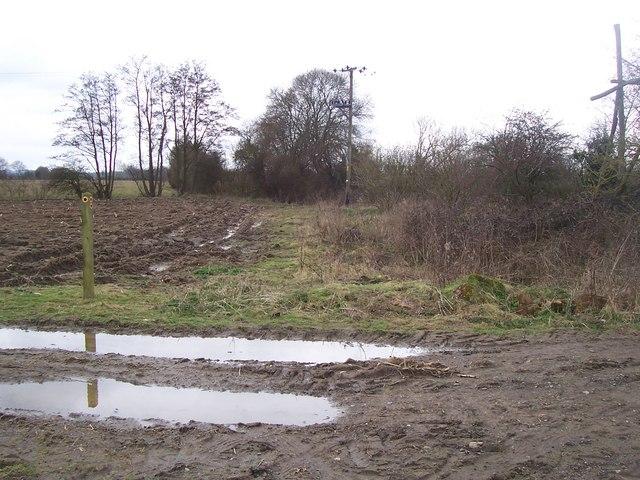 Footpath junction in Elderden Farm