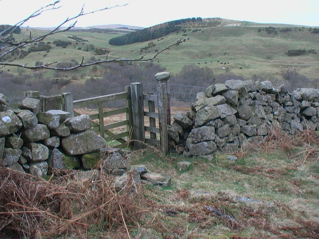 Gate in drystane dyke at north end of Heddon Wood