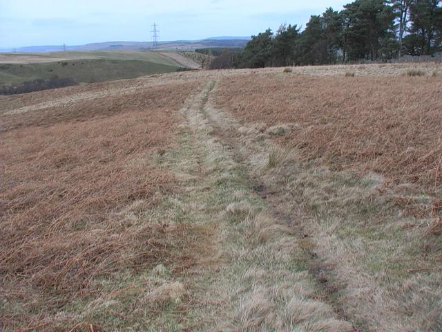 Moorland track west of Heddon Wood