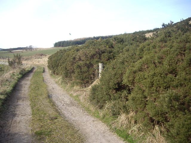 Track from Balnacraig to Denhead