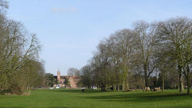 Parkland in Beddington Park