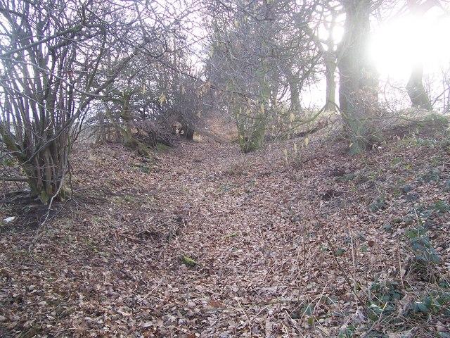 Roman Ridge