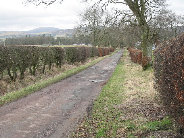 Westside Road