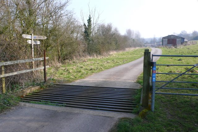 Cattle Grid at Notton