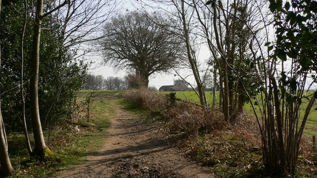 Bridleway leaves Vining Rough