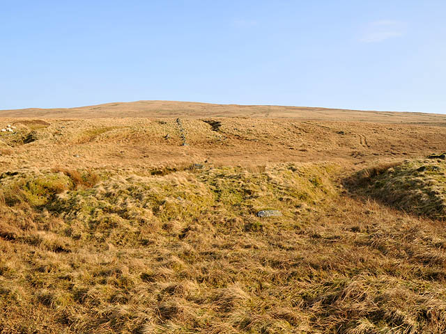 Moorland and rough grazing