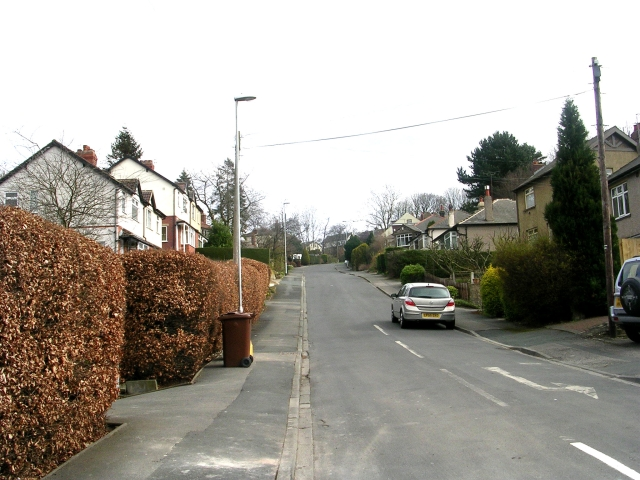 Crow Trees Park - Leeds Road