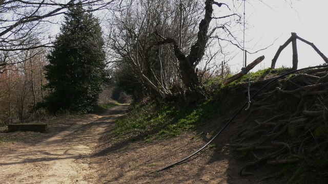 Bridleway on Vining Common