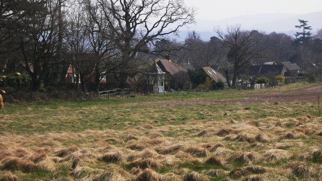 Houses by field at Lodsworth