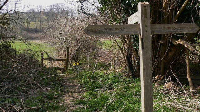 Footpath junction with bridleway at Heathend Copse
