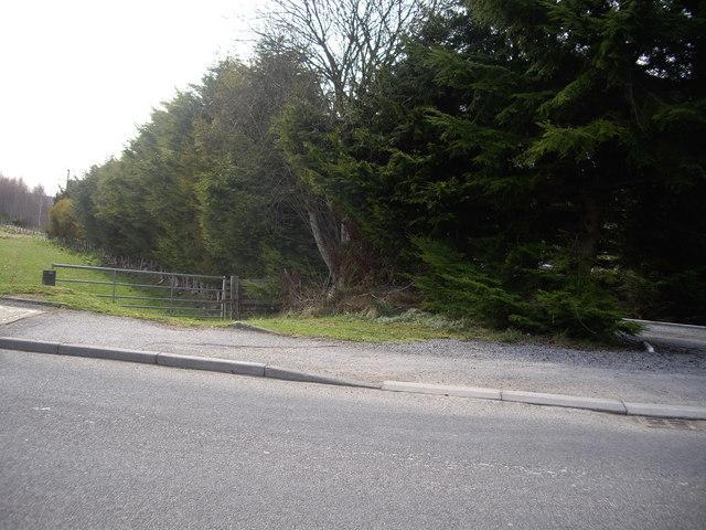 Down-line old Deeside Railway