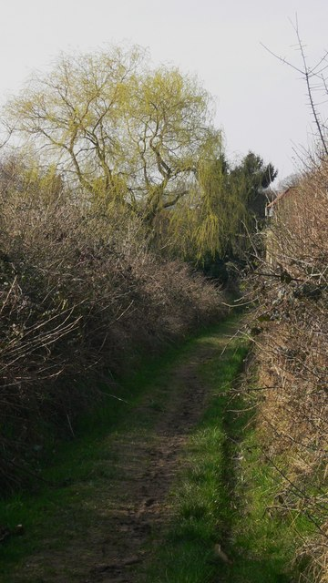 Permissive footpath leading to Easebourne Street