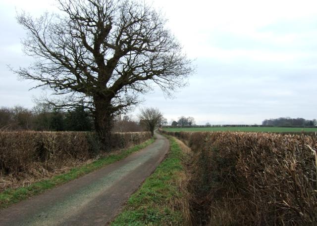 Wharmadine Lane