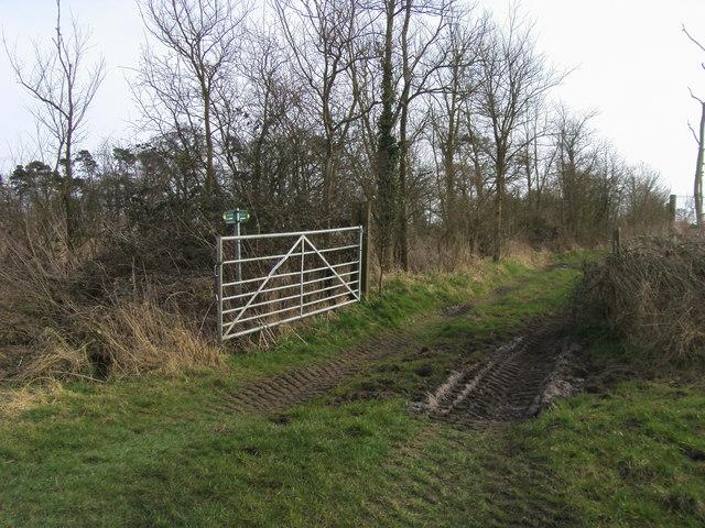 Footpath to Newington
