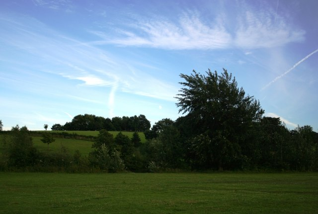 July evening in Cawthorne Park