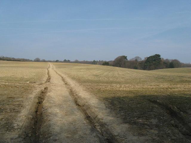 Field crossing