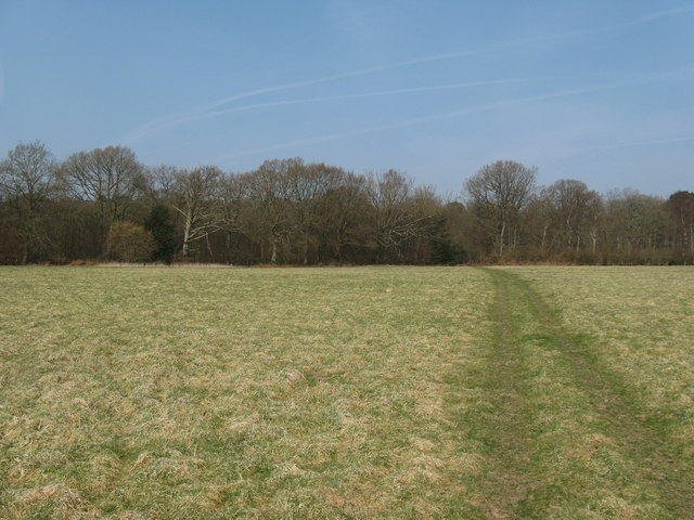 Path to Fittleworth Wood