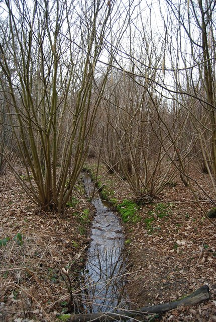 A small stream, North Bishopden Wood