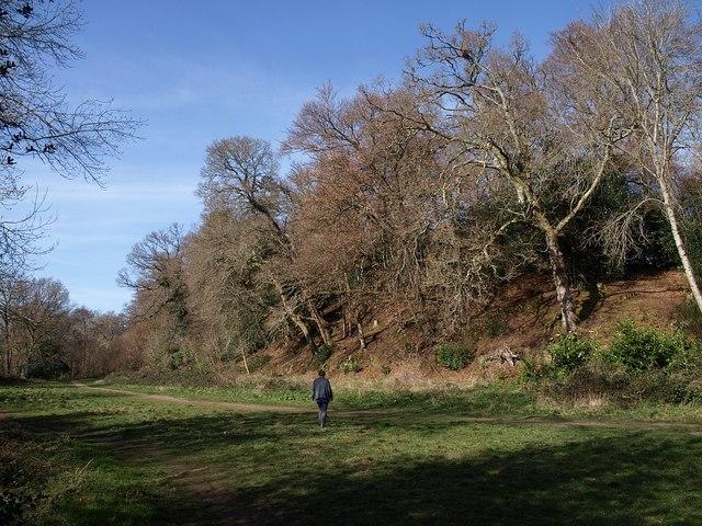 Meadow by Parke Bridge